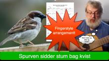 Spurven sidder stum bag kvist fingerstyle arrangement